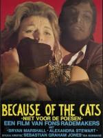 Because of the Cats /Niet Voor de Poezen- Raridade