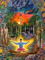 Ayahuasca - Planta Milagrosa